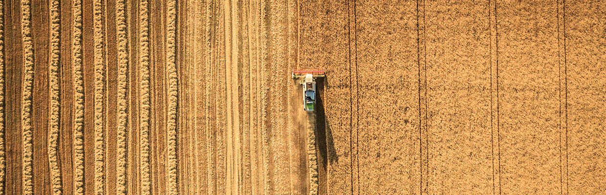How drones are revolutionising crop management and production