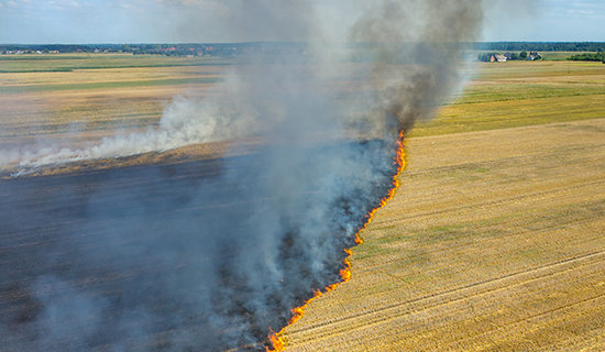 How farmers can fight fire risk proactively by joining FPAs